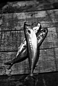Mackerel on a wooden surface