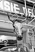 A cow's head hanging in a butcher's