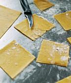 Raw pasta dough squares