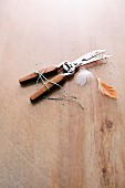 Poultry scissors with kitchen twine and feathers on a wooden surface