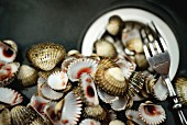Fresh clams with a fork (seen from above)