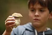 A boy holding a porcini mushroom