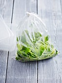 Purslane in a plastic bag