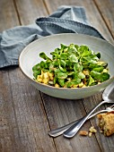 Lamb's lettuce with a parsnip and pumpkin seed dressing