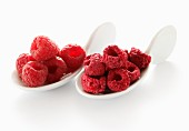 Raspberries, fresh and freeze-dried, on two spoons