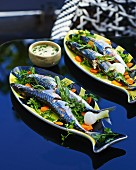 Blue mackerel on a bed of herbs with a mint and butter sauce
