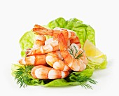 Cooked prawns on lettuce with dill and lemon