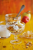 Autumnal muesli with nuts and natural yoghurt