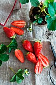 Fresh strawberries and strawberry plants on a linen cloth