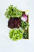 Various types of lettuce in a wooden crate (seen from above)