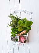 Fresh herbs with kitchen twine and knife in a wooden basket