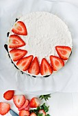 A creamy cheese cake being decorated with strawberries