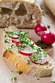 A slice of baguette topped with radishes, cress and chives
