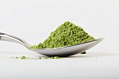 A spoonful of wheatgrass powder for juices or smoothies