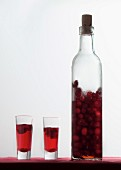 Homemade cherry liqueur in a bottle and in shot glasses