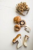 Enoki mushrooms, Portobello mushrooms and porcini mushrooms