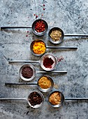 Various spices on metal spoons