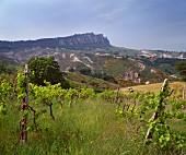 Blick auf den Monte Titano, San Marino