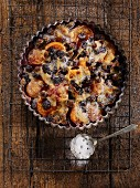 Apricot and blueberry clafoutis dusted with icing sugar in a tart tin on a wire rack
