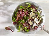 Salad with bean sprouts, curled lettuce and blue cheese