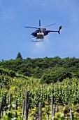 Schädlingsbekämpfung per Hubschrauber im Weinberg, Rheinland Pfalz, Deutschland
