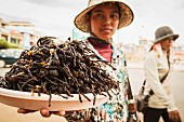 A woman selling fried tarantulas, Cambodia