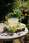 Fresh blackberry leaf tea