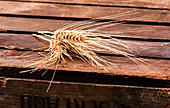 Ears of wheat on a wooden crate