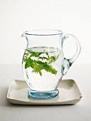 Fresh herbs in a jug of water