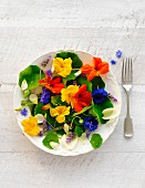 A plate of various fresh edible flowers