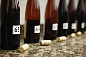 Bottles of open wine for a wine tasting session