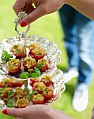 Tomatoes with a breadcrumb and herb filling for a croquet garden party