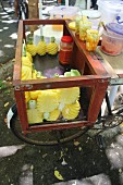 Peeled, fresh pineapple in a transport container on a bicycle (Mauritius)