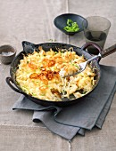 Cheese (soft egg noodles from Swabia) in a pan