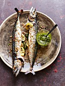 Peppered mackerel with ginger and salsa verde