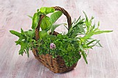 A wicker basket filled with fresh herbs