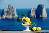 Zitronen auf Capri