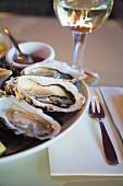 Frische Austern und Weisswein