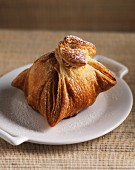 Apple dumpling (Apple baked in pastry)