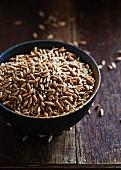Organic spelt wheat in a ceramic dish