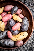 Assorted varieties of potato in a wooden bowl
