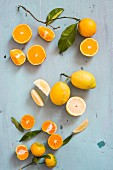 An arrangement of citrus fruits