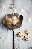 Orangen-Zimt-Cookies zu Weihnachten