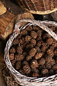 Pine cones in a wicker basket