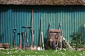 Various garden tools and a wheelbarrow leaning against a green corrugated iron wall