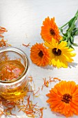 Marigolds (calendula officinalis), dried petals and marigold oil