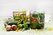 Two jars of homemade gherkins surrounded by ingredients