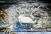 Flour in a metal sieve