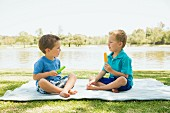 Two brothers sitting on a picnic rug eating ice lollies, Newport Beach, California, USA