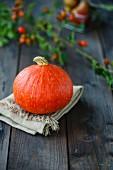 An autumnal arrangement featuring a Hokkaido pumpkin